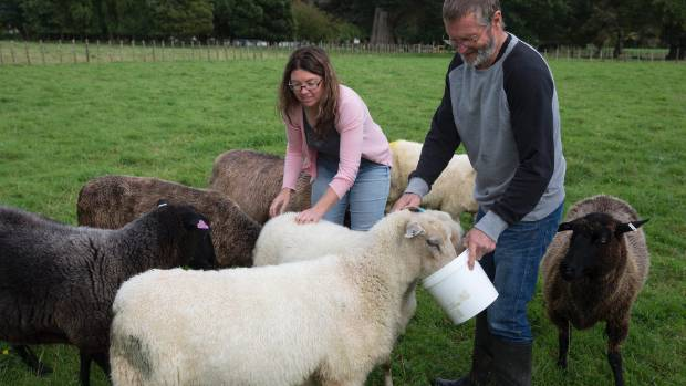 Kirsty Silvester and Dave Chapman at their Woodville Wildbush sheep milking farm.