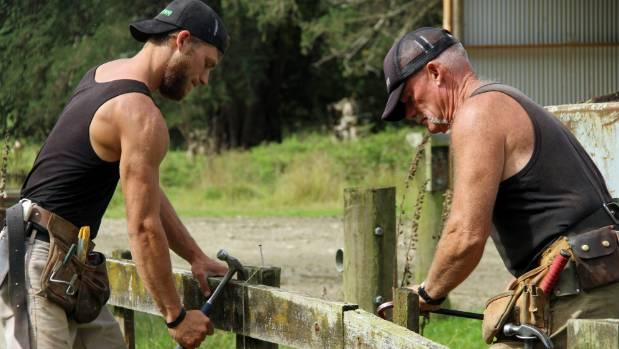 Adrian Graham and his son John Graham replacing an old fence on Ngaputahi Station, Pohangina