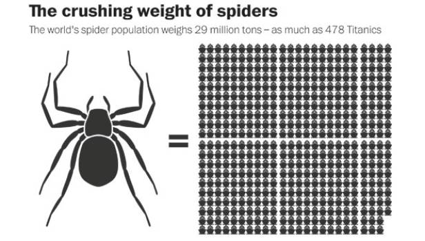 There are how many spiders in the world