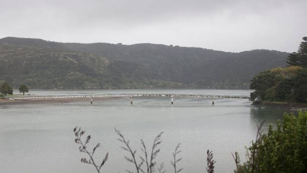 Water rescue in Raglan underway