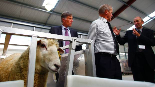 At the  Agricultural Greenhouse Gas Research Centre in Palmerston North. Far right, Harry Clark talks animal greenhouse ...
