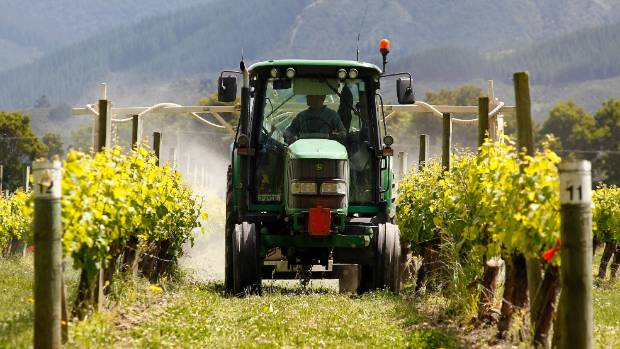 A tractor sprays grape vines in a vineyard off Stump Creek Lane, outside Blenheim. (File photo)