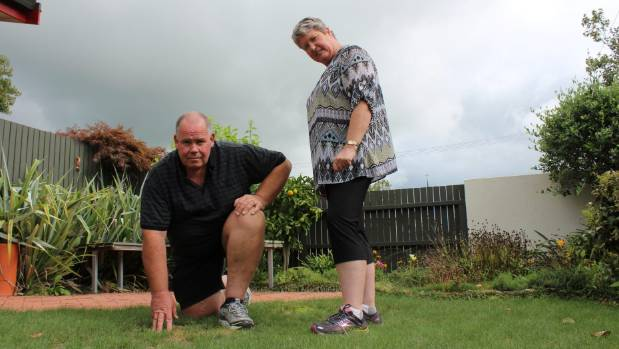 Understanding what makes a good lawn is a passion for Mark and Linda Amos.