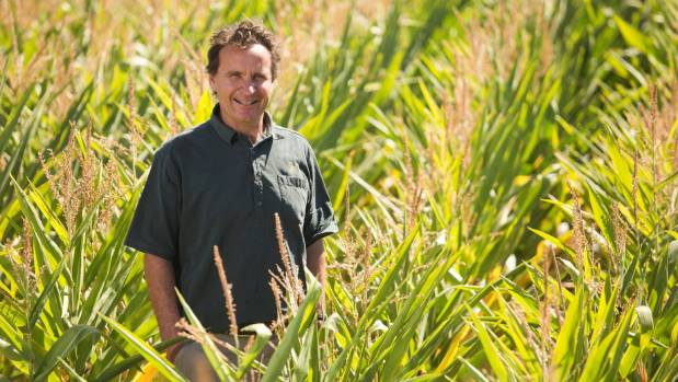 """Hawke's Bay organic grower John Bostock says GE-free status is a """"huge opportunity"""" for the local agricultural economy."""