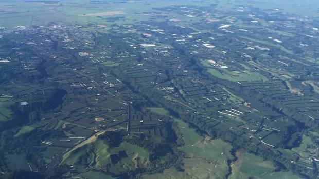 Te Puke, the heart of the kiwifruit industry, where planted orchards have been selling for $800,000 a hectare.