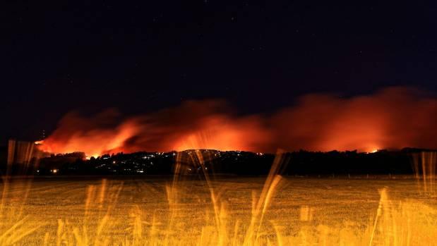 The devastating February fires destroyed homes and a vast area of Port Hills' vegetation.