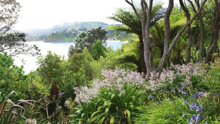 seaside blooms  advice for creating a coastal garden