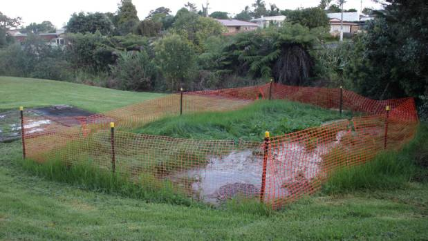 Sewage overflow on the reserve on Matipo Rd on the Te Atatu Peninsula, west Auckland.