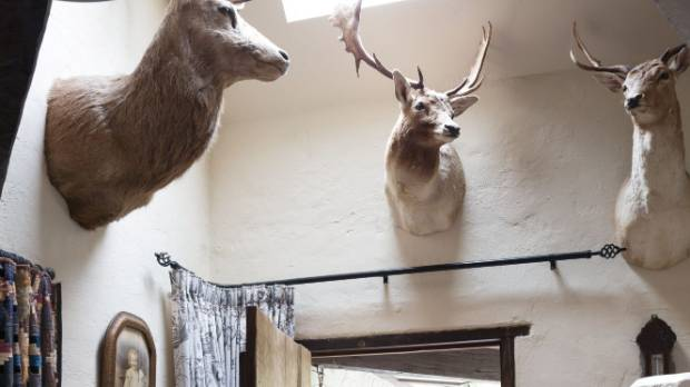 """The entranceway is testament to Henryk and youngest daughter Brenna's hunting skills: """"Hunting is Henryk's total love, ..."""
