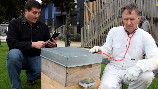 Hivemind software engineer Andrew Calder (left) and project leader Stephen Irons  checking a hive.