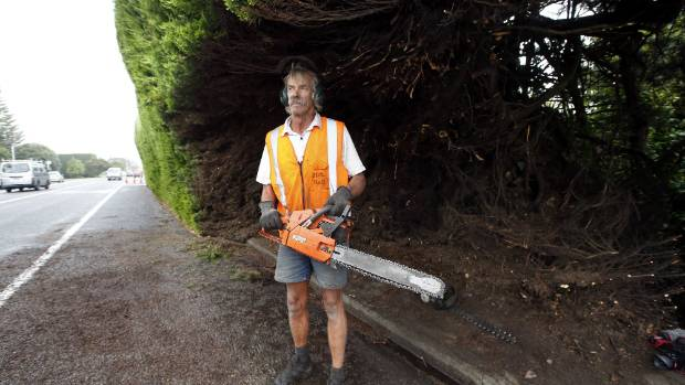 In March, Vince Osborne started cutting a corridor along the bottom of his hedge to improve visibility.