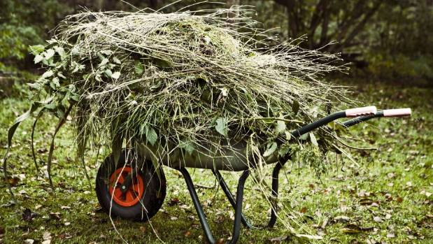 Turn your green waste into mulch.