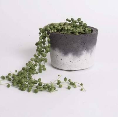 Two toned concrete pot, RRP $49 by Leden from Indexed.