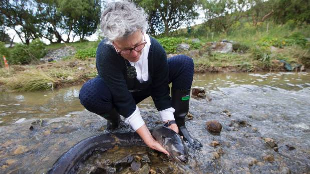 Owhiro Bay resident Jane Poata with a dead eel found in  the polluted Owhiro Stream.