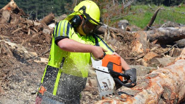 IFS Growth chief executive James Treadwell says you cannot put a price on staff safety in forestry.