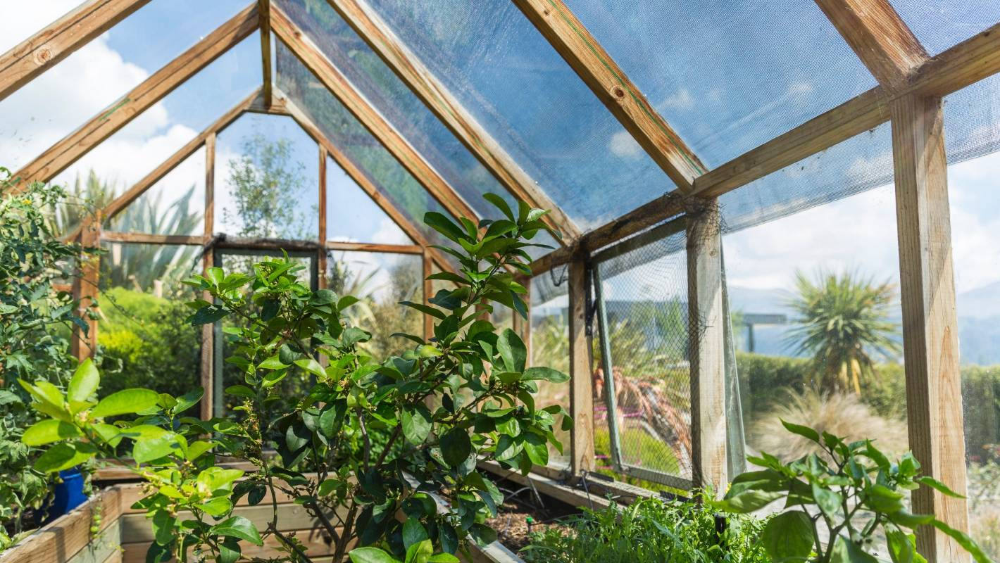 The Great Indoors: 12 incredibly useful tips on getting the