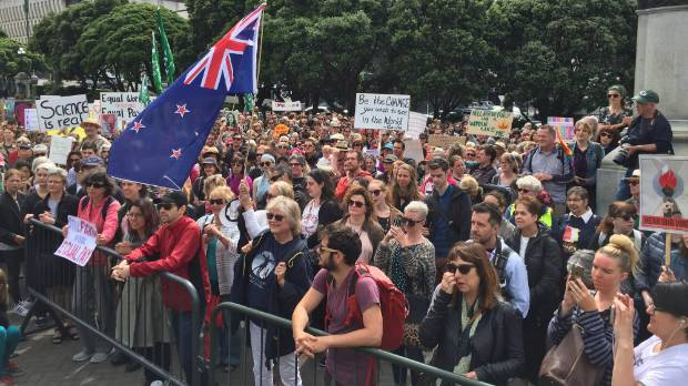 Hundreds marched for women in Wellington in January. Organisers of Saturday's March for Science hope for a good turnout.