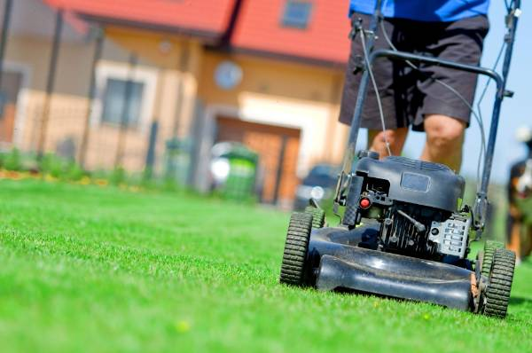 7. Mow high: Setting your mower high (7-10cm) gives your grass a head start in the neverending competition with weeds. ...