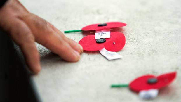 Poppy collection money goes toward supporting the RSA's welfare section.