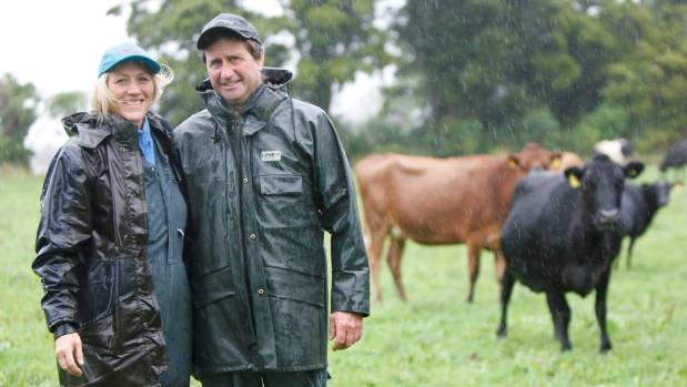 Collingwood dairy farm owners, Deborah and Tim Rhodes, are stepping outside the box to turn their 135-cow dairy farm ...