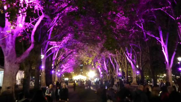 The Melbourne Garden and Flower Show packed a punch with their outdoor lighting this year.