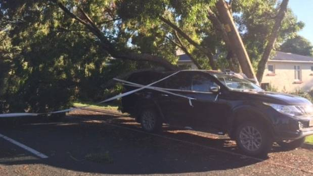 Cyclone Cook brought trees down on cars on Lucknow Road, Havelock North.