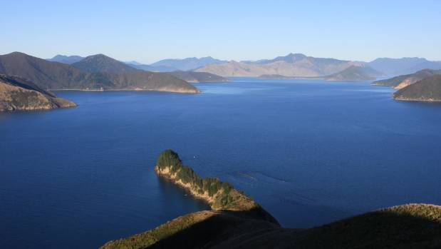 A view over Waitata Reach at the entrance to Pelorus Sound. Blowhole Point is close to the peninsula in the foreground.