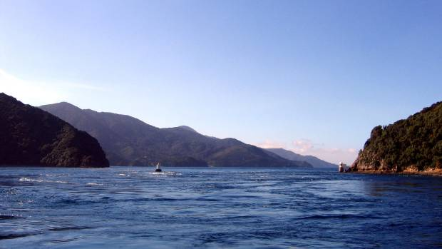 The dolphin Pelorus Jack was said to help sailors navigate the French Pass, a short but tricky stretch of water between ...