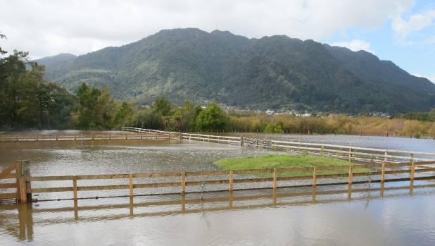 Nik Given's property in Te Aroha in eastern Waikato was left underwater.