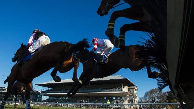 Racing minister calls for 'barbaric' jumps racing ban