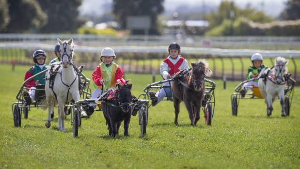 Phoebe, the smallest horse on the track, managed to win a race over the weekend.