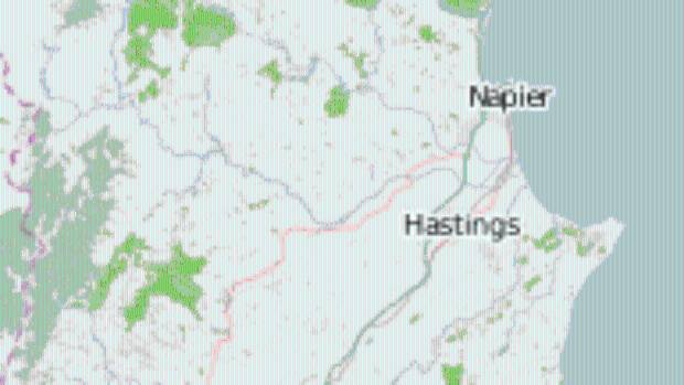 Moderate shaking was recorded in Hastings after a 4.6 magnitude earthquake struck on Monday afternoon.