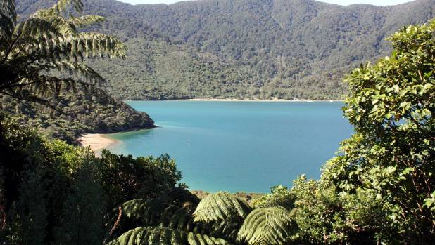 A view of Endeavour Inlet from the Queen Charlotte Track.