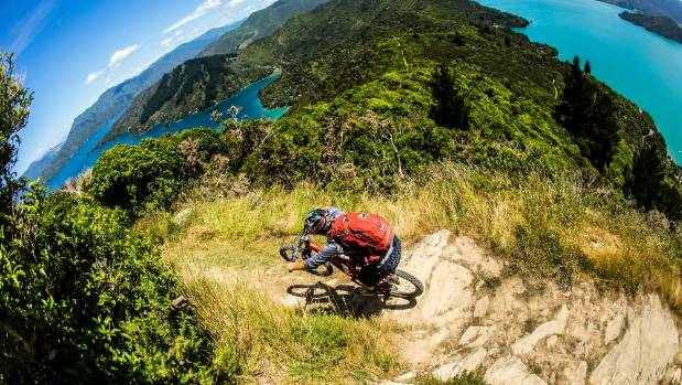 A mountain biker rides the Queen Charlotte Track, which could be linked up as part of the Coastal Pacific Trail.