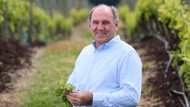 Allan Scott Family Winemakers founder Allan Scott in one of his Marlborough vineyards. (File photo).
