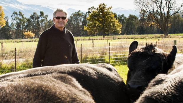 David Giddlings of Meadowslea stud will hold his first female production sale on May 5.