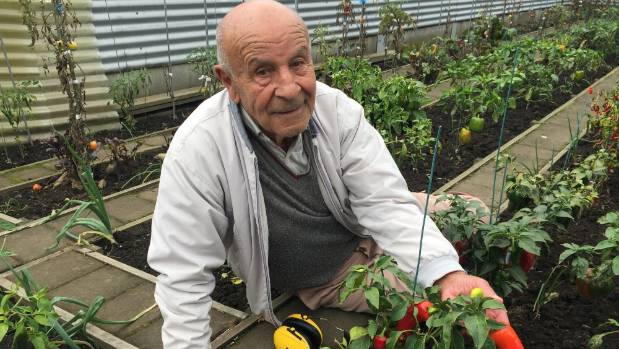 Slavko Nikolovski's garden is usually thriving but  his plot was a mass of rotted fruit and leaves when visited in mid-April.