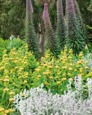 Landscape architect Robert Watson designed part of the garden.