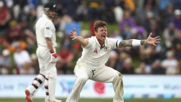 James Pattinson has a history of aggressive appealing, seen here pleading for the wicket of Brendon McCullum.