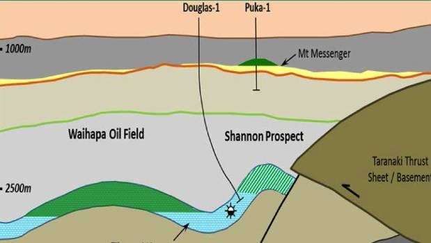 One of the five wells to be explored will be east of the Waihapa field as TAG Oil and joint venture partners MEO drill ...