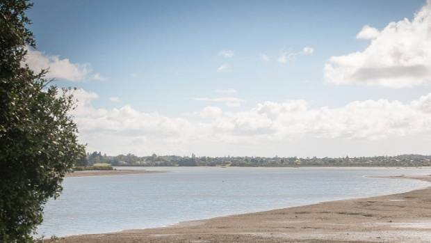 Body found by fisherman in Manukau Heads