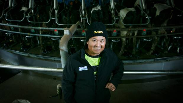 Filipino dairy workers like Ireneo Molina are vital to the dairy industry.