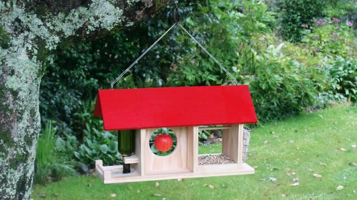 Diy Build A Feeder To Attract Native Birds To Your Garden