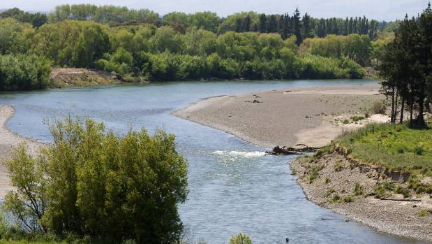 The Manawatu River, looking upstream from near the wastewater discharge.