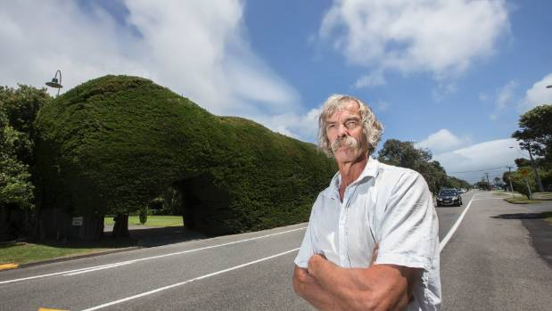 Vince Osborne stands in front of his hedge in January after getting word the council wanted its entire frontage cut back.