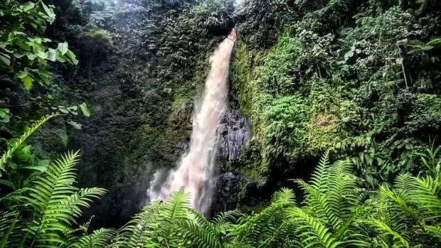 Rotokas, Bougainville.