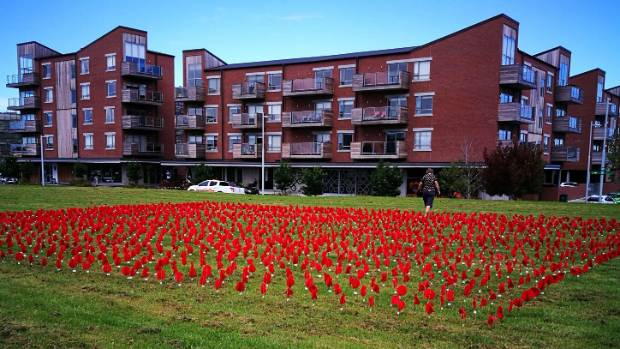 The peace poppy installation will be up until next Thursday.