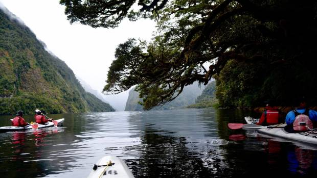 Photo taken in Doubtful Sound during a kayaking trip in the overcast yet mysterious weather. Even though it was cloudy ...