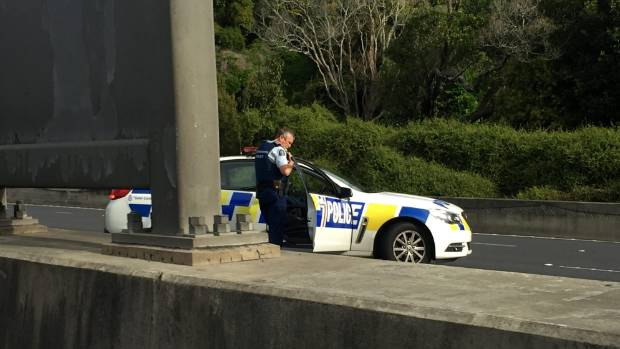 A police officer on Auckland's southern motorway.