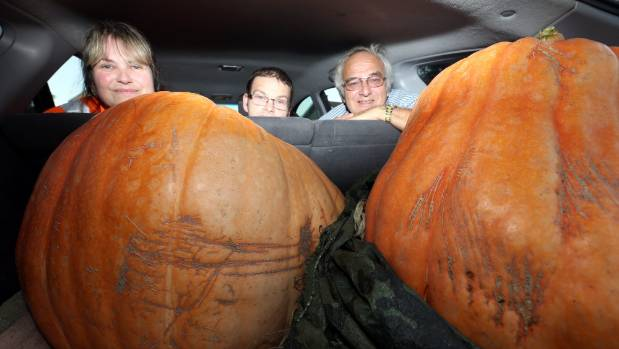 Melissa, Aaron and Trevor Biggs loaded 2 giant pumpkin into their station wagon for the Timaru Horticultural Autumn Show.